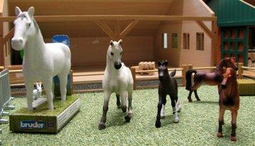 Alle-paarden