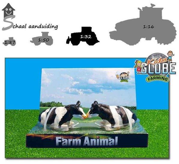 2 zwartbonte koeien liggend