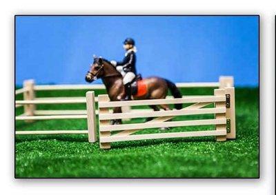 houten hekjes voor schleich paarden