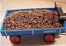imitatie aardappelen