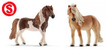 ijslander pony familie